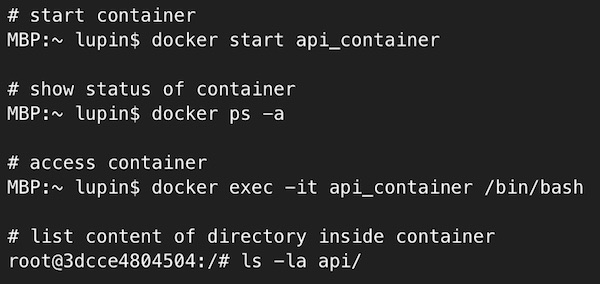 docker-machine access container