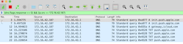 Wireshark display filter for DNS